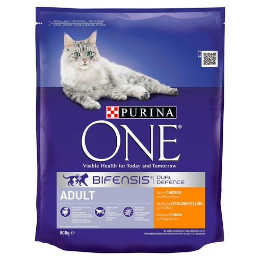 Picture of Purina ONE Adult Dry Cat Food Chicken and Wholegrains 800g