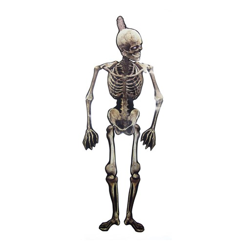 Picture of $@1.5m Paper Jointed Skeleton